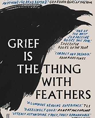 Picked up Grief is the thing with feathers at the Festival of Writing and Ideas last weekend. After the talk with author Max Porter and Enda Walsh and Cillian Murphy, I wanted to get the feel of the book that's been on my to read list for a while! It's a short book which is attractive to me as I have many to read. I finished it in a couple of bedtime reading sittings. It's a poem, a novel, a rant, a memoir, a drama and it's mostly lovely and sad. I loved the father's voice when he remembers the wife he lost to a tragic accident. I love the two young boys and the tales they tell about their mother and how they help their Dad grieve alongside them. The crow motif / character was just that. Needed nut unlikeable. Language everywhere with the crow. I mostly loved the third act and the last few pages are emotional and deserving of a stand up encore from the reading audience!