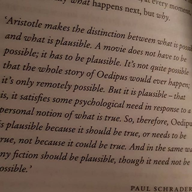 Richard Skinner references Aristotle who was referenced by Paul Schrader. On plausibility in writing fiction. It is plausible because it should or needs to be true not that it could be true. It's complex reading but it means a lot to character writing and helping gain a reader's trust. . .