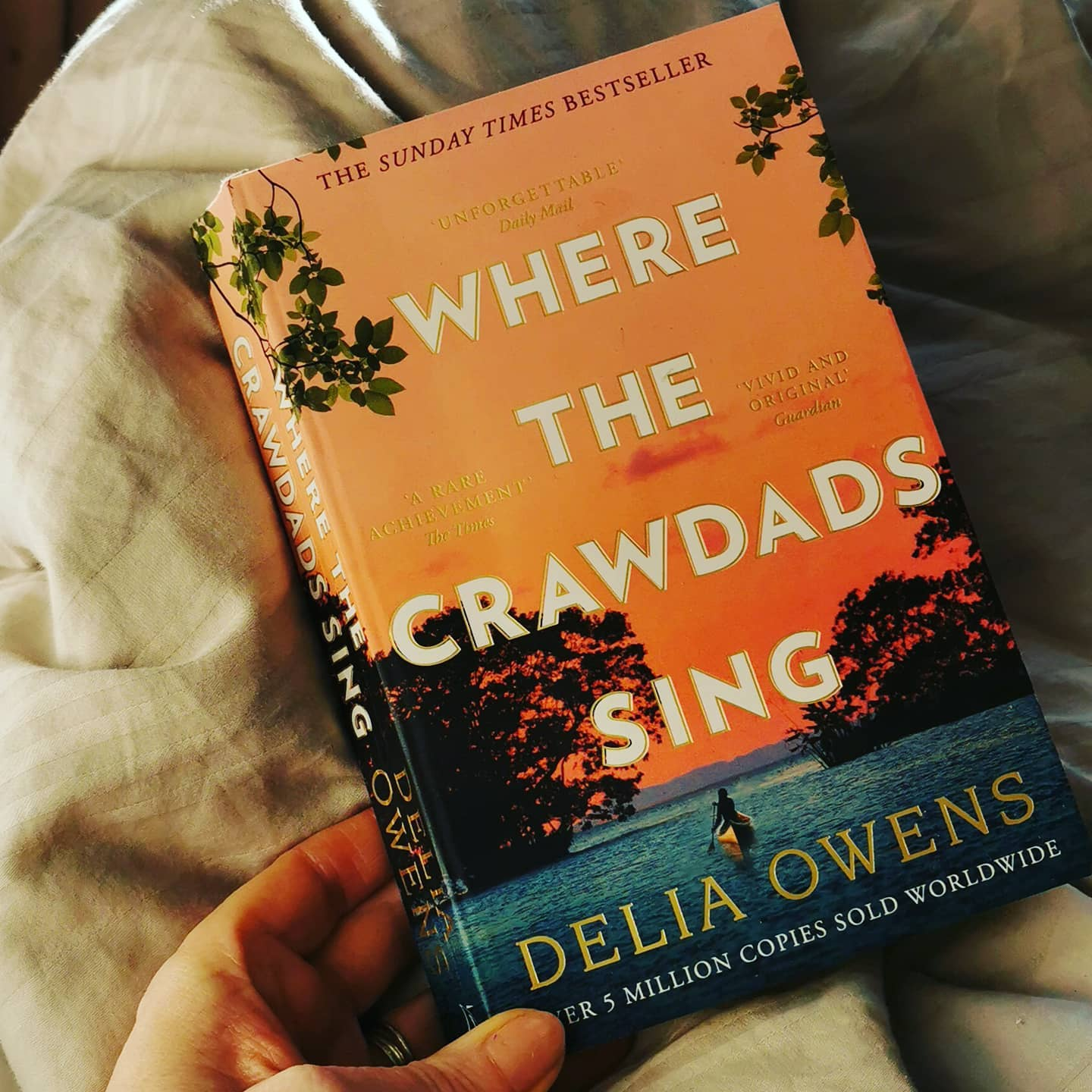Where the crawdads sing by Delia Owems. I just finished reading this. I sometimes find bestsellers hard to read as other people's opinions and thoughts weight heavily on my own. It's not that I allow other reader's thoughts intrude on mine, it's just that I don't want to offend a fellow reader's book taste. This is a taste thing. I feel grumpy after reading this book. I appreciate the author's writing of the landscape and nature. I appreciate the different idea of a girl living in a marsh in seclusion. I appreciate how the girl's isolation is depicted. All these elements work well. What didn't work for me as a reader was the mish mash of genres. Is this book a Mills and boons as it certainly verges into that that at times. Is it a crime thriller? Kinda but the court scenes where the main character is set before a jury are so weak, boring and the dialogue needs reworking. Is it a film script? Oh yes, it is and that's the main problem for me. I know that when we write that images are conjured up can be film like but this story or novel really feels like it was written or rewritten with a silver screen on mind. Especially the ending which I was not one bit surprised by. Apparently Daisy Edgar Jones is being mentioned to play Kya, the main character. Let's hope Daisy can make Kya somewhat appealing or fun to be with. I couldn't understand why anyone would want to spend time with Kya as she was portrayed as being joyless. Gosh this is harsh and now it's awkward but I have to ask what did you think of the best selling novel/film that is the Crawdads?