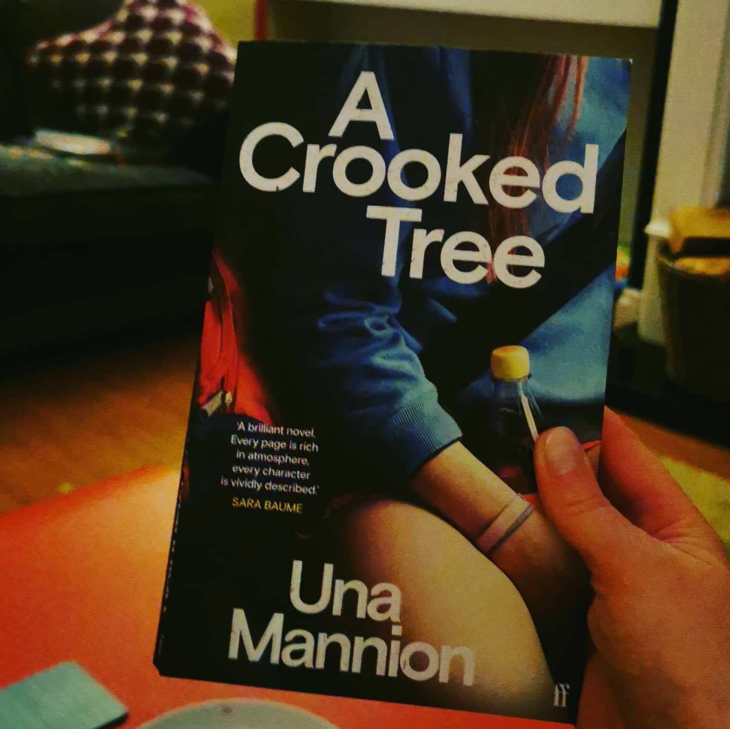 A Crooked Tree by Una Mannion.  I have always admired Una's short fiction so I was excited to get my hands on her debut novel. It doesn't disappoint though it's a slow, slow start and it remains slow but by the time you get to end, you will enjoy that relaxed pace as it suits the story and the characters.  Libby is out for a drive at night with her siblings. Her mother is driving. We feel the tension but when Ellen, Libby's younger sister frustrates her frazzled mum, her mum basically dumps Ellen on the roadside and speeds off.   The story rocks on from this one awful decision and we learn about Libby and her connection with her father who has passed away.  This novel, set in an 80s rural Philadelphia, has all the feels of a  Goonies movie or an episode of Stranger Things. Una's writing never falters but I found the descriptions of nature and trees a little bit lengthy at times. It's clear she revels in writing about nature.  Overal, I found it to be a mesmerising read. Una's writing is carefully placed throughout and her plotting is excellent.